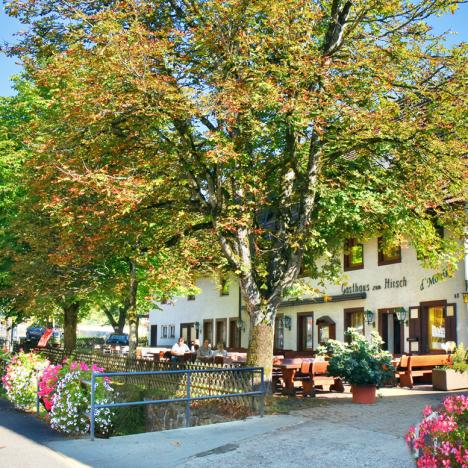 Idyllischer Biergarten Gasthaus Hirsch, d'Monika