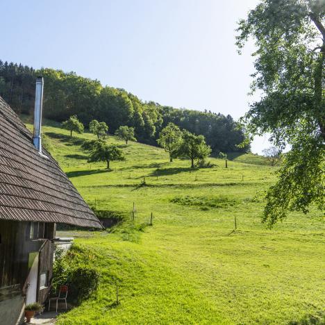 Zimmerblick, Gasthaus zum Hirsch - d'Monika, Hausach / Einbach